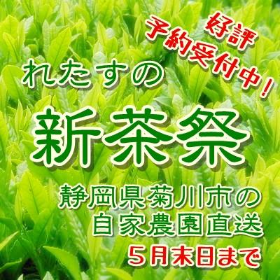 新茶祭 予約販売 静岡県菊川市自家農園直送